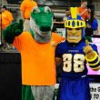 Spartan-Gator Shout Out almost here; Your participation welcomed