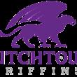 Dutchtown HS unveils new logo