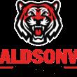 Donaldsonville High develops new athletic logos